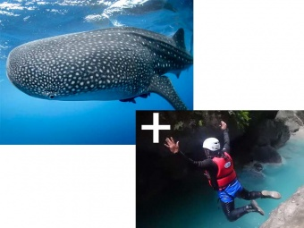 canyoning-and-whale-shark-oslob-800x600_1588844695