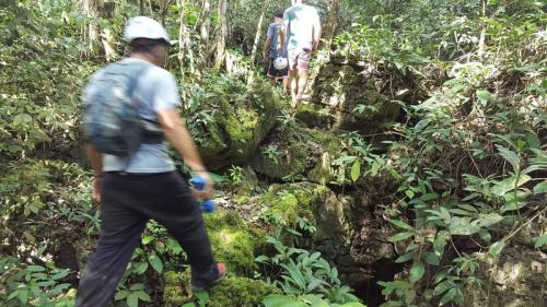 jungle_trekking_close_to_cebu_city